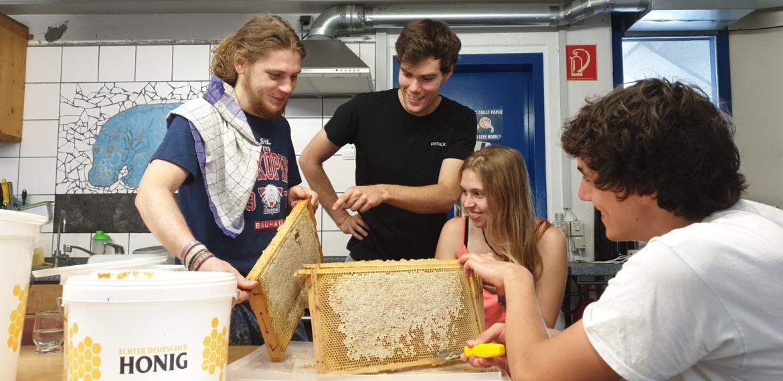 Der AK Campusbienen bei der Honigernte