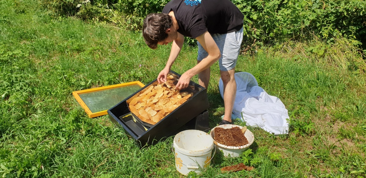Students let scraps of old wax melt in the sun and collect the melted wax in a container for re-use