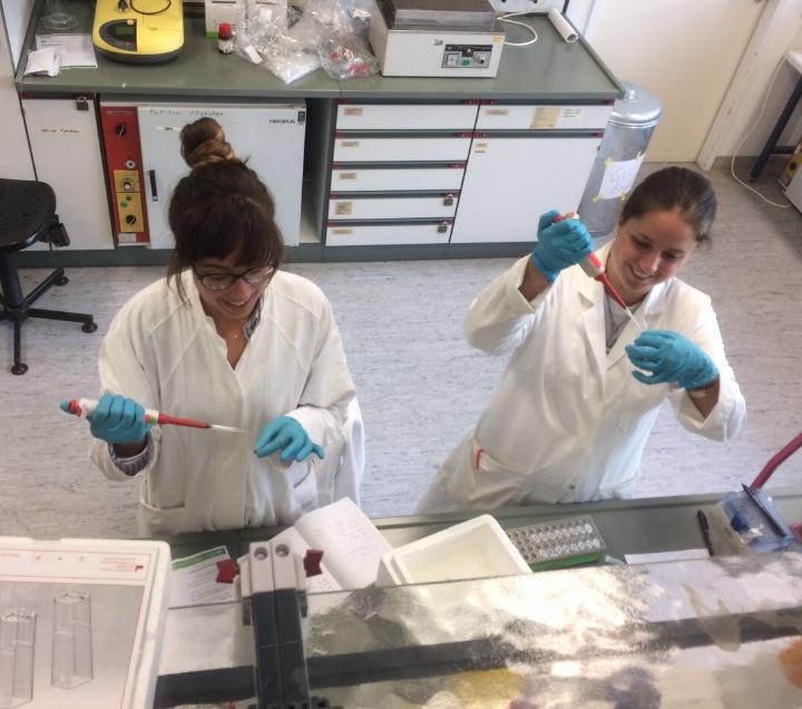 Nicole Buss (links) und Elke Evgrafov im Labor. (c) iGEM