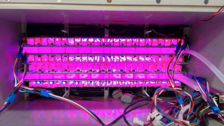 Die Kanäle in der Photobiokammer sind so angelegt, dass die Algensuspension gleichmäßig durchmischt und optimal mit Nährstoffen und Licht (im blauen und roten Wellenlängenbereich) versorgt wird. (c)
