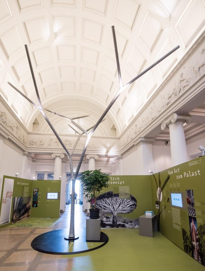 """Der sechs Meter hohe, aus Glas- und Carbonfasern geflochtene """"Baum"""" zeigt, wie sich Verzweigungen, die neuralgische Punkte bei Bauwerken darstellen, optimieren lassen. (c) Kovalenko/Staatliches Museum für Naturkunde Stuttgart"""