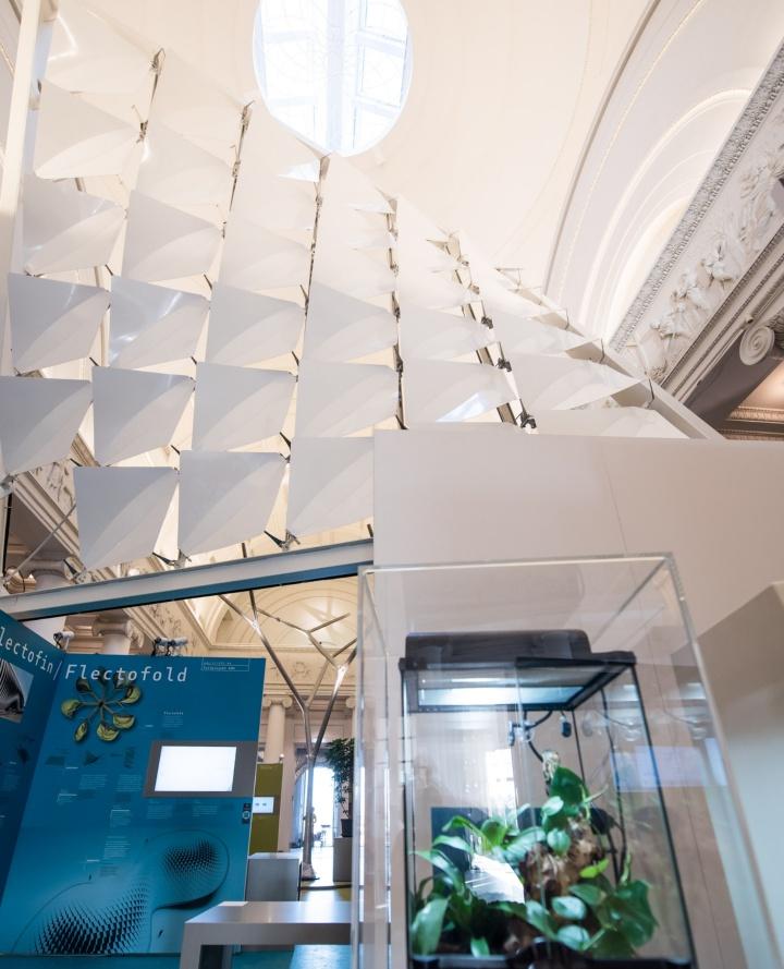 Die 36 Module Flecotofold lassen sich ganz ohne Gelenke flexibel falten. (c) Kovalenko/Staatliches Museum für Naturkunde Stuttgart